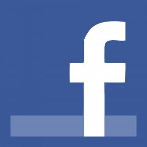 facebook social reputation CV