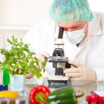 Tecnologo alimentare: cosa fa e dove lavora