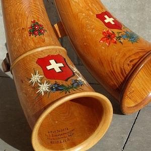 curriculum per la svizzera