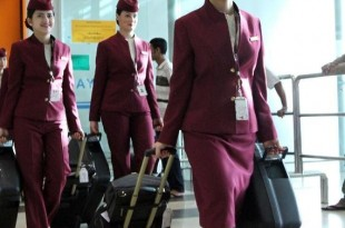 curriculum assistente di volo
